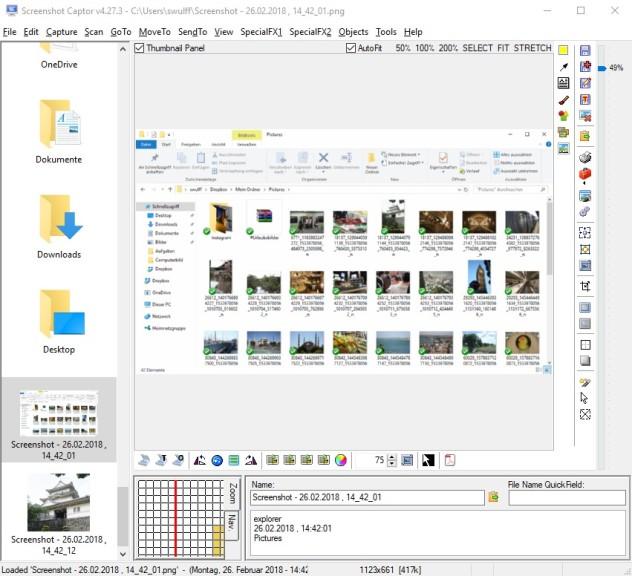 Screenshot 1 - Screenshot Captor
