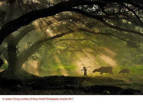 Sieger in der Kategorie Reisen: James Chong (Singapur) © James Chong courtesy of Sony World Photography Awards 2011