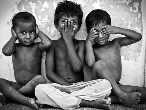 three monkeys - von: kottelotte ©three monkeys - von: kottelotte