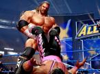 WWE All Stars©THQ