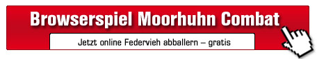 Moorhuhn Combat©Phenomedia