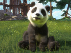 Kinect Panda©Microsoft