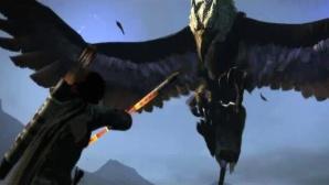 Rollenspiel Dragon�s Dogma: Kampf©Capcom
