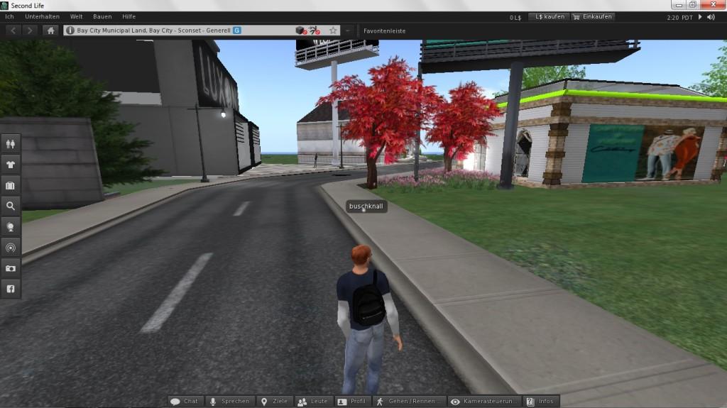Screenshot 1 - Second Life