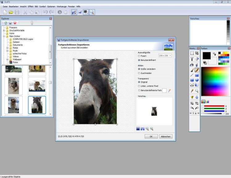 Screenshot 1 - IcoFX