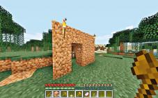 Minecraft: Behausung©Mojang