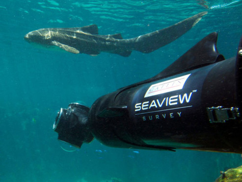 Great Barrier Reef © Catlin Seaview Survey