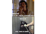 Hello, this is Dog©knowyourmeme.com