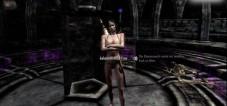 Rollenspiel The Elder Scrolls 5 – Skyrim: Bug©Bethesda