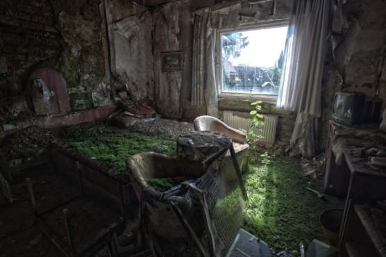 In a Bed of Grass – von: mafia-hitman ©mafia-hitman