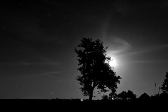 Stille – von: Ernest60 ©Ernest60