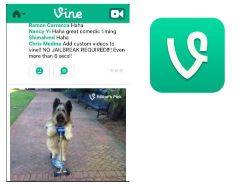 Vine – Make a Scene ©Vine Labs