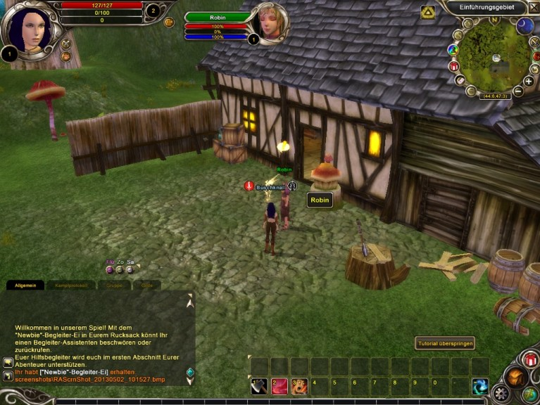 Screenshot 1 - Runes of Magic