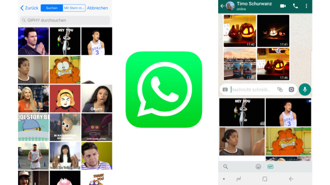 WhatsApp: GIF-Bilder verschicken © WhatsApp, COMPUTERBILD