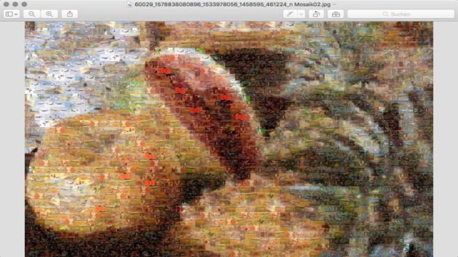 AndreaMosaic: Kinderleicht Mosaike erstellen ©COMPUTER BILD, Andrea Denzler
