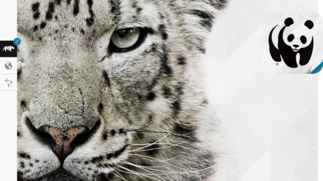 WWF Together ©World Wildlife fund