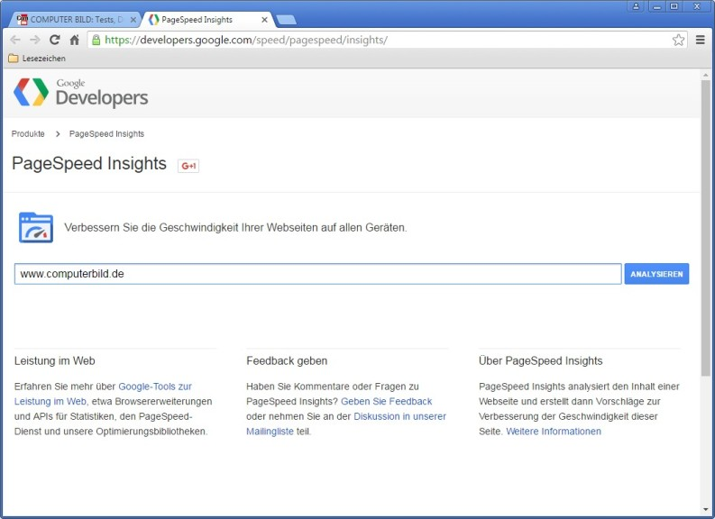 Screenshot 1 - PageSpeed Insights