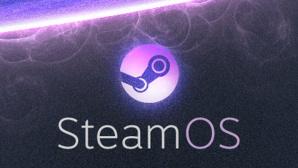 Steam OS©Valve