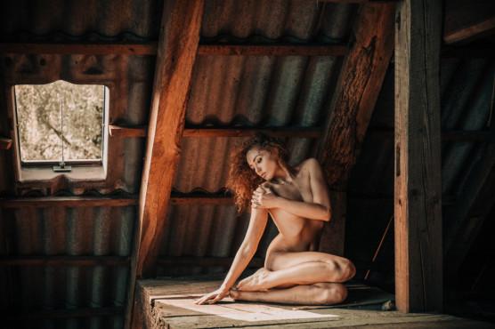 In the attic ©metroshifter