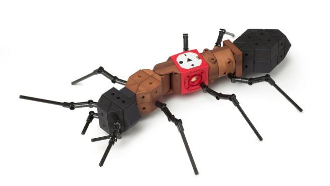 Ameise von Tinker Bots ©Tinker Bots