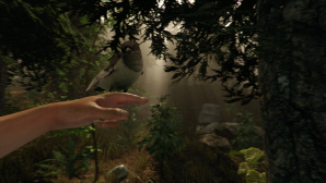 The Forest: Bird is the Word©Endnight Games
