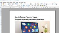 Platz 99: OpenOffice©COMPUTER BILD
