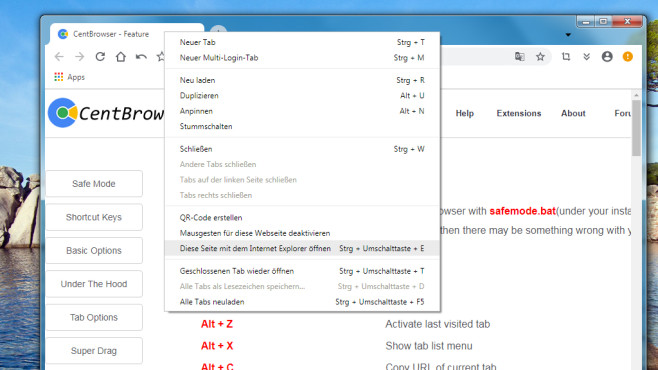 Cent Browser: Schneller Surf-Client mit IE-Teamwork ©COMPUTER BILD