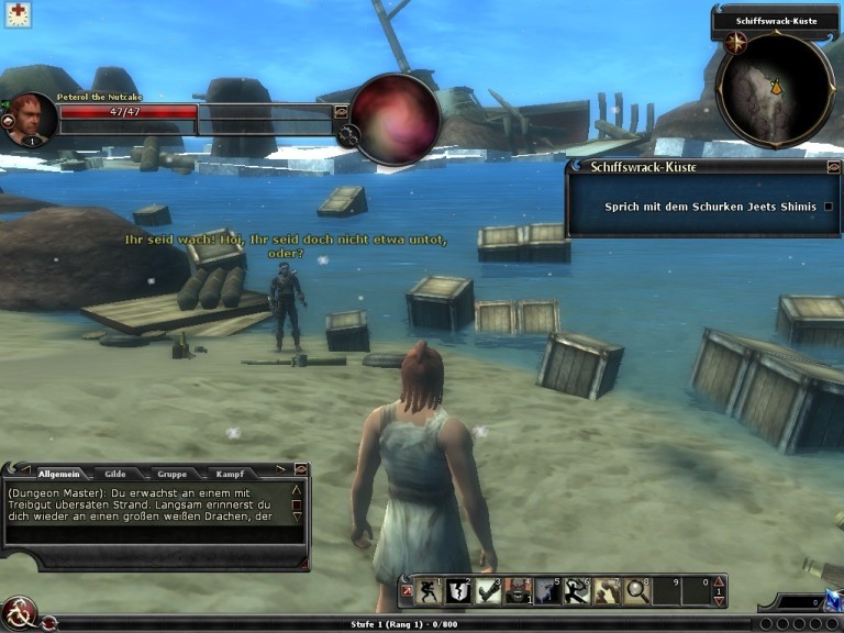 Screenshot 1 - Dungeons and Dragons Online