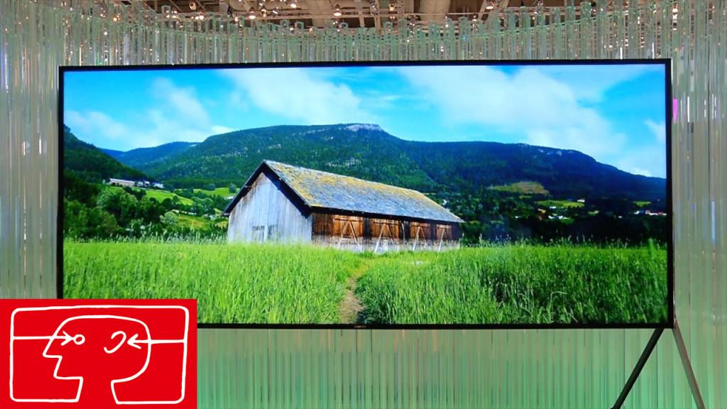 Fernseher Zeigt Grünes Bild