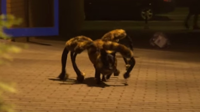 Mutant Giant Spider Dog (SA Wardega) © YouTube, SA Wardega