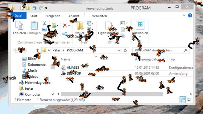 Desktop Games: Käfer für den Desktop ©COMPUTER BILD