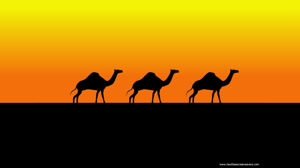 Screenshot 1 - Camels Screensaver