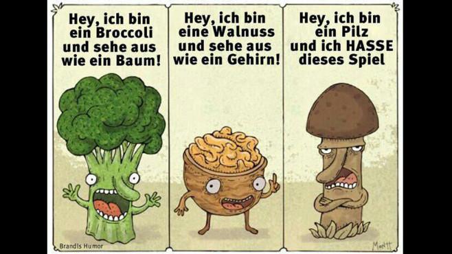 Pilz ärgere Dich nicht ©echtlustig.com