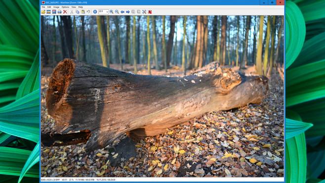 IrfanView: Bilder verwalten, editieren, erstellen ©COMPUTER BILD, Irfan Skiljan