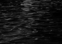 Project Zero – Priesterin des schwarzen Wassers ©Tecmo Koei