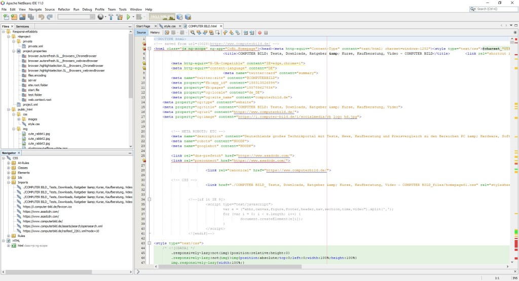 Screenshot 1 - NetBeans IDE