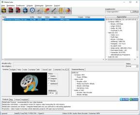 MediaCoder (32 Bit)