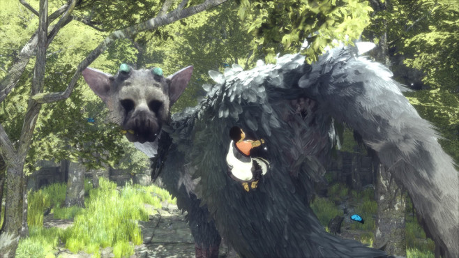The Last Guardian ©Sony, genDesign