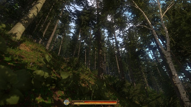 Screenshot Kingdom Come - Deliverance: Wald©Warhorse Studios