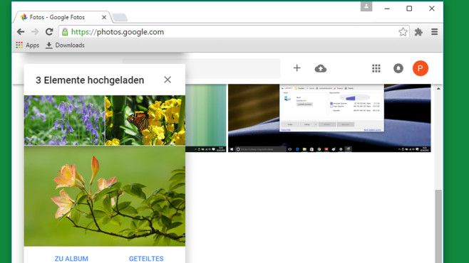 Google Fotos: Offizieller Picasa-Nachfolger ©COMPUTER BILD