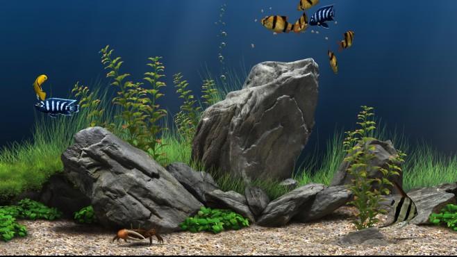 Screenshot 1 - Dream Aquarium Screensaver (Mac)
