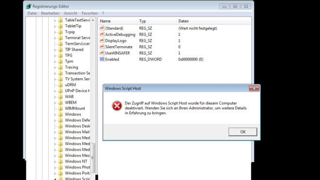 Windows-Script-Host-Fehlermeldung ©COMPUTER BILD