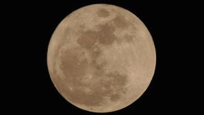 Seltenes Spektakel am Abendhimmel: Am 14. November erstrahlt der Mond �ber Deutschland gr��er und heller als gew�hnlich©pexels.com