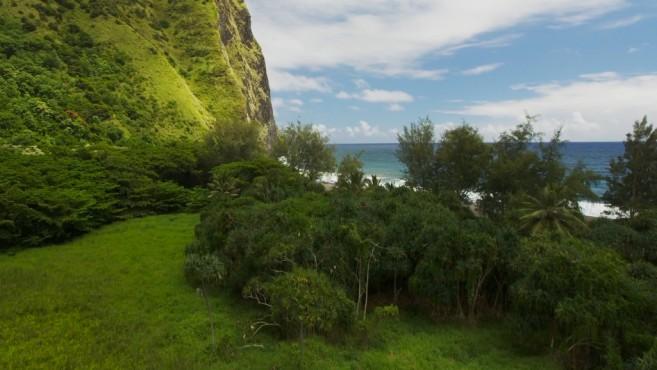 Hawaii05 ©Apple, COMPUTER BILD