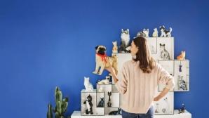 Frau mit Mops an Katzensammlung©Ebay