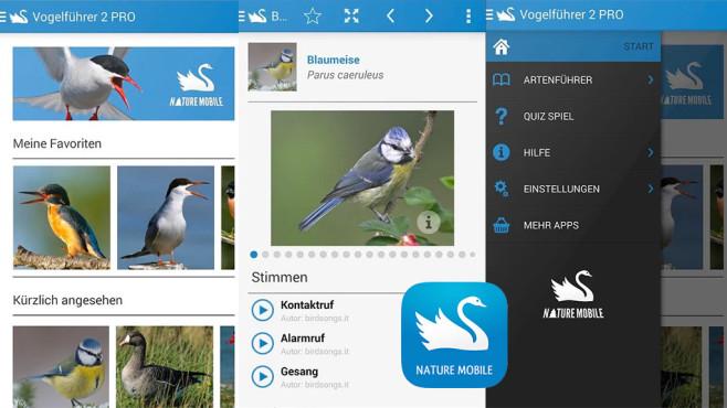 Vogelführer 2 Pro ©Nature Mobile